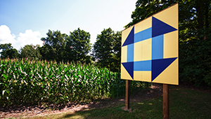 Barn quilt board beside cornfield