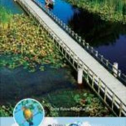 Birding Map Cover